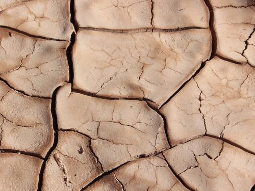 Horizontal close up of dry cracked earth.