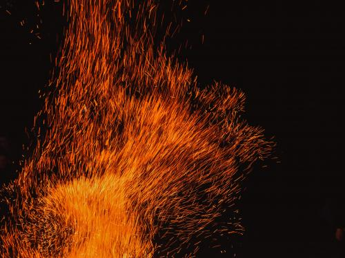 Horizontal photo of a swam of fire embers.